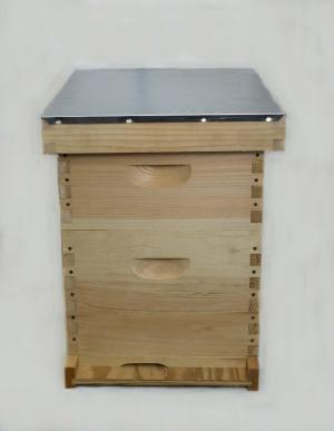 8 Frame Starter Hive